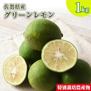 訳あり 佐賀県産 特別栽培 レモン 1kg 国産 マイヤー リスボン クエン酸 ビタミンC 柑橘 人参ジュース