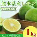 \一度食べたら忘れられない!/熊本県産 スキッとレモン 1Kg 【特別栽培農法】【国産レモン】