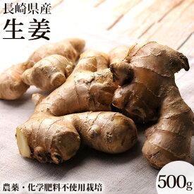 無農薬 生姜500g しょうが ショウガ デザイナーフーズ 料理 長崎県産