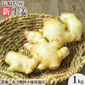 無農薬 生姜 1kg ショウガ(新生姜) しょうが デザイナーフーズ 長崎県産 ショウガオール ジンゲロール 生姜焼き ジンジャーティー 甘酢漬け スープ 料理