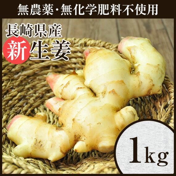ママ割エントリーで店内全品ポイント5倍 無農薬 生姜1kg しょうが ショウガ デザイナーフーズ 料理 長崎県産
