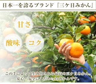日本一を誇るブランド