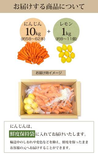 お届けする商品(人参10kg+レモン1kg)