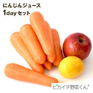 にんじんジュース1dayセット(にんじん1kg・りんご1個・レモン1個)農薬・化学肥料不使用栽培人参 ゲルソン療法 人参ジュース 約620cc分 おためし お試し 1日分 一日分 少量 一人暮らし用 スロ