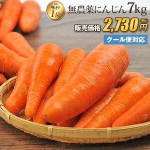 【訳あり】国産 無農薬にんじん ジュース用 7kg 送料無料 クール便 無農薬 野菜 酵素 生酵素 ゲルソン療法 あす楽