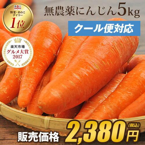 \15時まであす楽対応/【訳あり】国産 無農薬にんじん ジュース用 5kg 【送料無料】【あす楽】