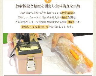 放射線量と糖度を測定