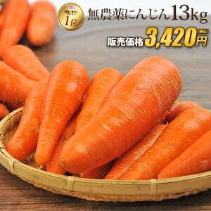 【訳あり】国産 無農薬にんじん ジュース用 13kg 送料無料 常温便 無農薬 野菜 酵素 生酵素 ゲルソン療法 あす楽