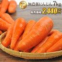 【訳あり】国産 無農薬にんじん ジュース用 7kg 送料無料 常温便 無農薬 野菜 酵素 生酵素 ゲルソン療法 あす楽