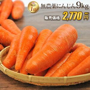【訳あり】国産 無農薬にんじん ジュース用 9kg 送料無料 常温便 無農薬 酵素 生酵素 ゲルソン療法