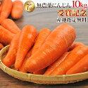 【訳あり】国産無農薬にんじんジュース用10kg【送料無料】