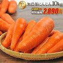 無農薬にんじん10kg(常温)(200円OFF)