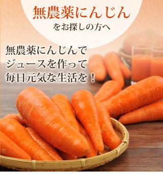 無農薬にんじんでジュースを作って毎日元気な生活を5kg