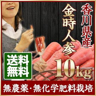 香川県産金時人参10kg