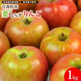 青森県産 樹齢40年の木から採れた深い味わい! 葉とらずりんご 1kg袋 ピカイチ野菜くん リンゴジュース 家庭用 訳あり B品 成田りんご園 陽向果 特許取得 人参ジュース りんご