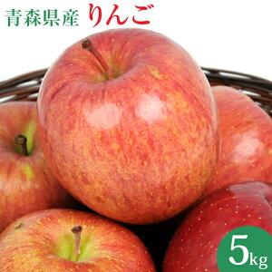 国産 青森県産 りんご 5kg 訳あり ふじ ジョナゴールド つがる リンゴ 訳アリ 人参ジュース ジュース用 林檎 アップル