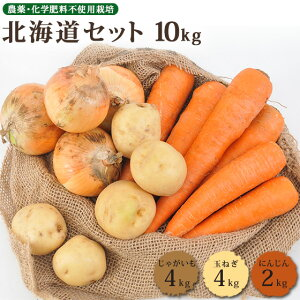北海道野菜10kgセット(無農薬にんじん4kg+じゃがいも4kg+玉ねぎ2kg)野菜スープ キット 朝食キット こだわり野菜 北海道野菜