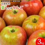 青森県産特栽葉とらずりんご3kg