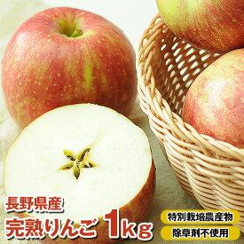 りんご部門ランキング1位獲得 国産 りんご 樹上完熟なので甘みが違う!「長野県産」りんご1Kg B品 特別栽培農産物 りんご 訳あり ジュース用 りんご