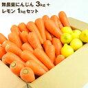 送料無料 無農薬にんじん野菜セット(無農薬にんじん3kg+レモン1kg) にんじんジュース キット コールドプレスジュー…