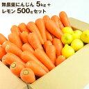 送料無料 無農薬にんじん野菜セット(無農薬にんじん5kg+レモン500g) にんじんジュース キット コールドプレスジュ…