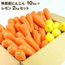 送料無料 無農薬にんじん野菜セット(無農薬にんじん10kg+レモン2kg) にんじんジュース キット コールドプレスジュ…