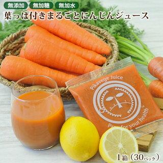 冷凍ピカベジジュース葉っぱ付きまるごとにんじんジュース1箱
