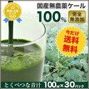 【プレミアム】無農薬ケール100% とくべつな青汁 【1ヶ月分100cc×30p】【冷凍ジュース】【無添加】【無農薬栽培】…