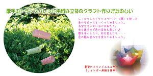 【フォリア/folia】87400トランスパレントペーパー(厚手)ホワイト10枚セット