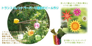 【マキュリアス/MERCURIUS】トランスパレントペーパークリスマスカラー5色100枚セット
