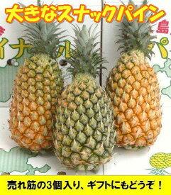 スナックパイン大玉3個入り1玉=1,3kgクラス沖縄・石垣島産全国送料無料!