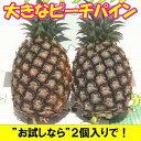 ピーチパイン大玉2〜3個入り石垣島産送料無料【smtb-MS】