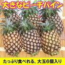 ピーチパイン大玉6〜7個入り石垣島産送料無料【smtb-MS】