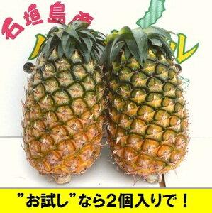 夏実パイン(ハワイ種)1玉=1,3kgクラス大玉2個入2020年、沖縄・石垣島産 全国送料無料!