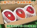 石垣島マンゴー1kgエコ箱入り(2〜3個入)送料無料【smtb-MS】冷蔵便発送