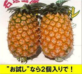 黄金パイン大玉2個入り1玉=1,5kg前後・石垣島産送料無料【smtb-MS】