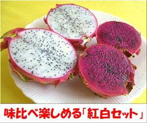 石垣島ドラゴンフルーツ紅白セット約1,5kg箱(計3〜6個入)送料無料【smtb-MS】冷蔵便発送