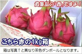石垣島ドラゴンフルーツ「赤」1kgエコ箱入り(3〜6個入)送料無料【smtb-MS】冷蔵便発送