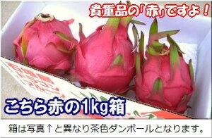 石垣島ドラゴンフルーツ「赤」1kgエコ箱入り(3〜6個入) 沖縄・石垣島産 冷蔵便・全国送料無料!