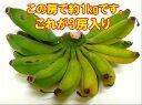 石垣島の島バナナ3〜6房約2,6〜3kg前後送料無料【smtb-MS】