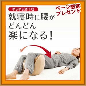【即出荷】\ページ限定・カードケース付/ PROIDEA プロイデア 寝返り運動 腰楽ゆらゆら 【正規品・後払いもOK】