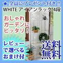 \ページ限定・カードケース付/ アイアンラック 4段 ホワイト SPL-6619WHT 【送料無料】 [ガーデンラック アイアン 白 フラワースタンド ホワイト...