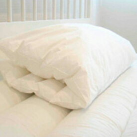 ダンフィル 枕 【正規品】 洗濯できる・洗える 低反発枕 【ダンフィル ピローミー】