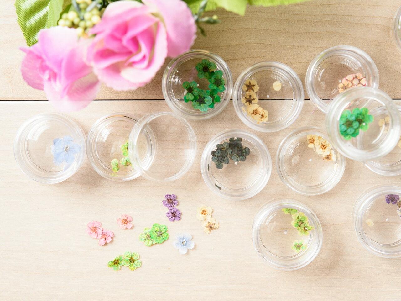 ドライフラワー Aタイプ 12色アソート 各色5個ずつ レジン ネイル 材料 パーツ押し花 乾燥花