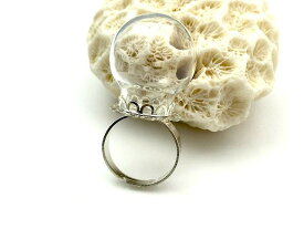 ガラスドーム リングセッティング3色 ホワイトシルバー レジン 材料 指輪 パーツ アクセサリーパーツ 材料 素材