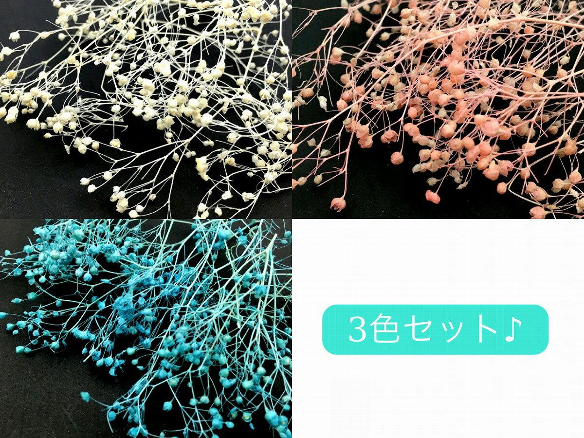 ミニかすみ草 全3色セット 白 ピンク 水色 ネイル レジン 材料 ドライフラワー 素材