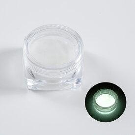夜光パウダー 夜光粉末 蓄光 2g 白 レジンクラフト 封入 素材 アクセサリーパーツ 材料 グローネイル