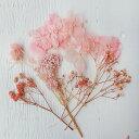 少量花材パック01 ピンク系A 約178×128mm / レジン用 キャンドル ハーバーリウム材料パック あじさい ajisai 紫陽花 …