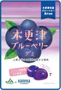 おいしい フルーツ おやつ こども 酸味 果汁ジュレ 乳酸菌 ブルーベリー グミ 木更津 ブルーベリーグミ ラブレ乳酸菌入 731