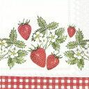 ドイツ IHR 素敵な ペーパーナプキン デコパージュ☆ストロベリー ギンガムチェック 赤 レッド 果物☆(STRAWBERRIES …